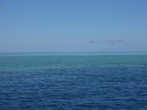 First in, last out dans Sorties en mer dscn1470-300x225