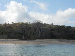 Plage de Sazilé dans Les plages dscn1685-300x225