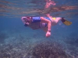 L'aquarium dans Sorties en mer pa070005-300x224